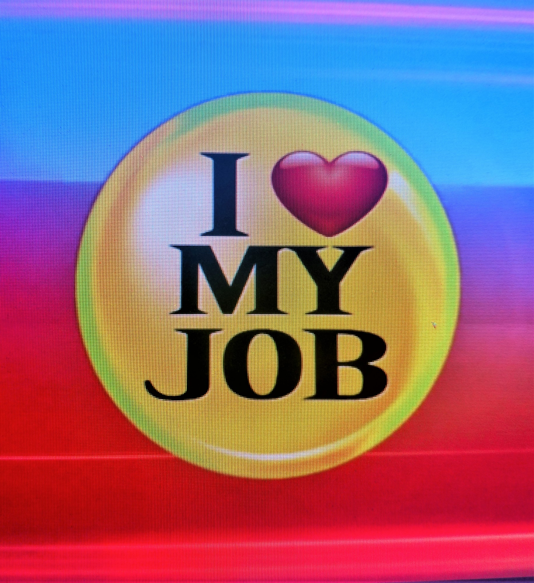 "Executive Director Nikki Harless featured on ""I Love My Job"""