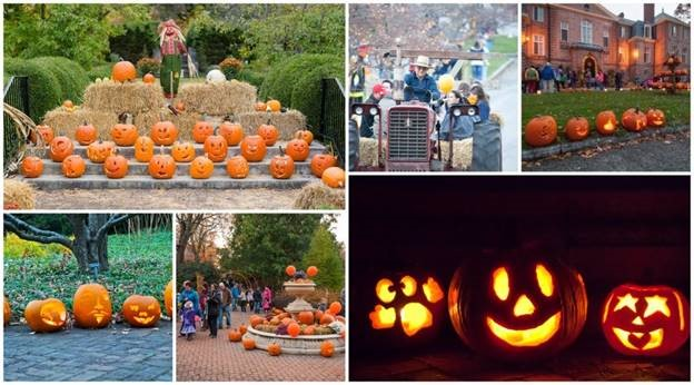 The Great Pumpkin Glow at Kingwood Center Gardens